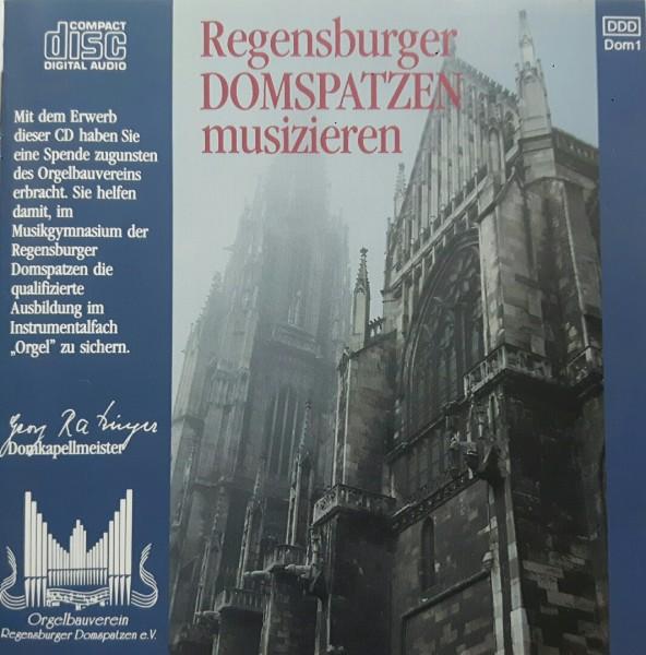 Regensburger Domspatzen musizieren